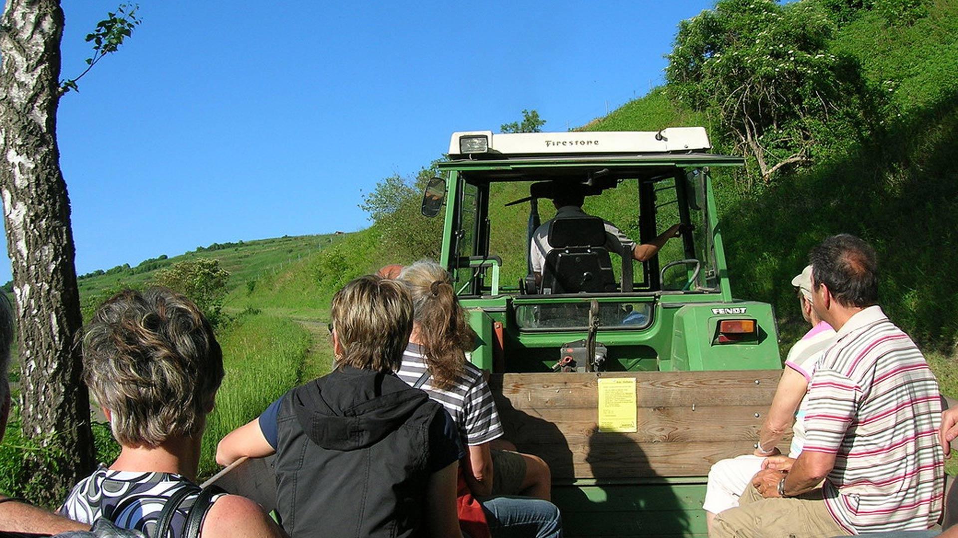 traktor-Waidhof-ihringen